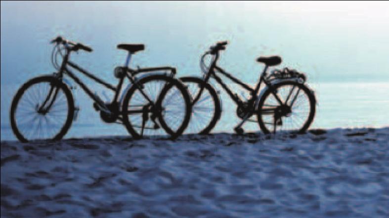 To cykler på en strand