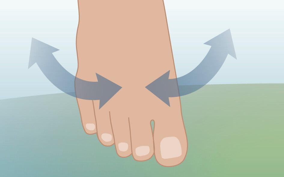 Illustration viser fod med pile der signalerer rotation i ankelledet.